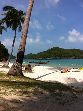 The Kala Samui:                                     plage