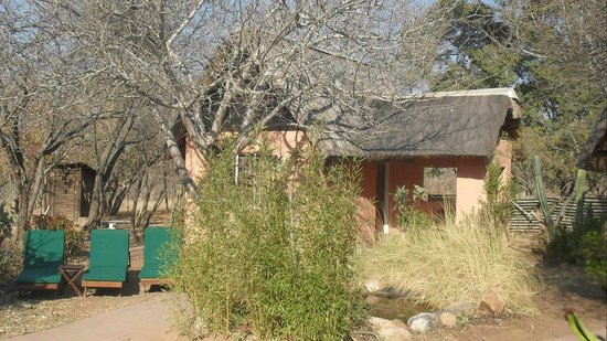 Photo of Nsele Safaris & Lodge Hoedspruit