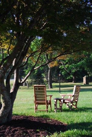 Roseloe Motel: Front lawn/