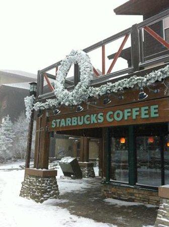 Outside of Starbucks - Day