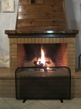 Ilaeira Mountain Resort:                   The fireplace in our cottage