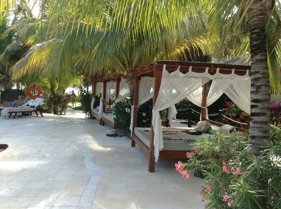 El Dorado Maroma, a Beachfront Resort, by Karisma:                   Pool beds