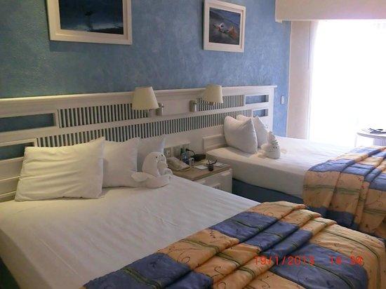 Sandos Playacar Beach Resort:                   La chambre 2430 avec vue partielle sur l'océan.  Palmier devant....