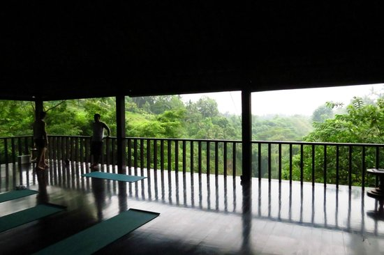 Uma by COMO, Ubud:                   View from the Yoga studio