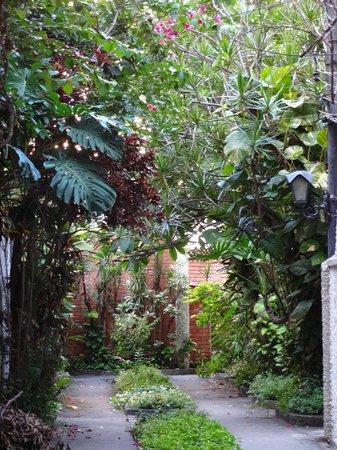 Ipanema B&B:                   Residential Street