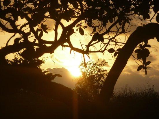 Le Soleil Levant Resort & SPA:                   lever de soleil dans le jardin