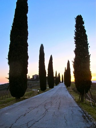 Villa Sobrano Country House :                   View of Surrounding Area