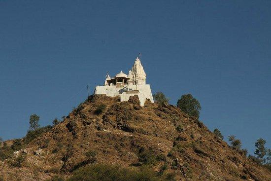 Hilltop temple near Nagda - Picture of Sas-Bahu Temple Tour ...