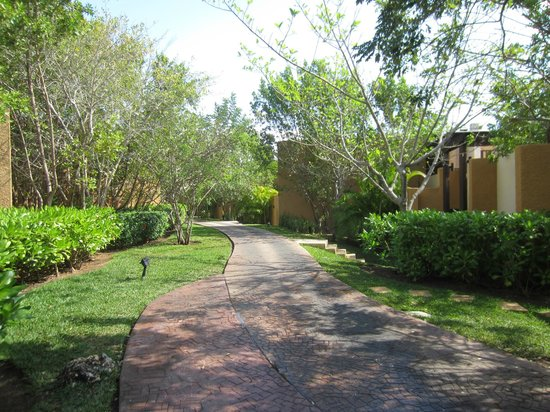 Banyan Tree Mayakoba:                                     Pretty path from main hotel to villas
