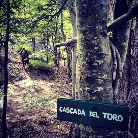 باتاجونيا كامب:                   cascata del toro                 
