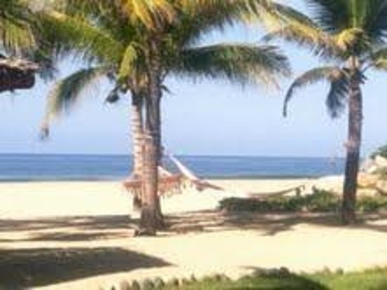 Las Palmas Beachfront Villas:                                     Hotel Las Palmas Beach - with hammocks