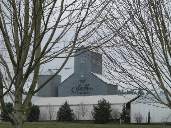 Stoller Vineyards:                   Approach to Stoller Winery