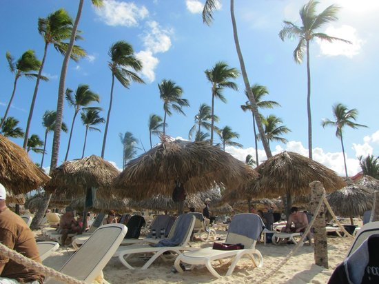 Majestic Colonial Punta Cana:                                     Beach