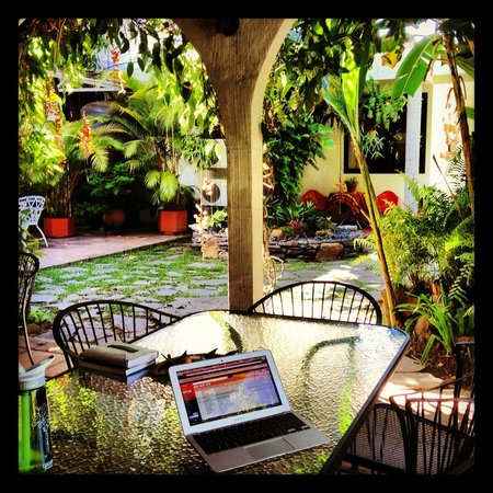 Arbol de Fuego Eco-Hotel:                   I had a great workday enjoying the garden; this is also where breakfast is.