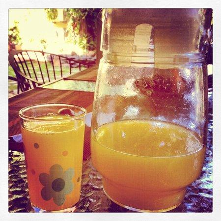Arbol de Fuego Eco-Hotel:                   Fresh OJ at breakfast every morning - yum.
