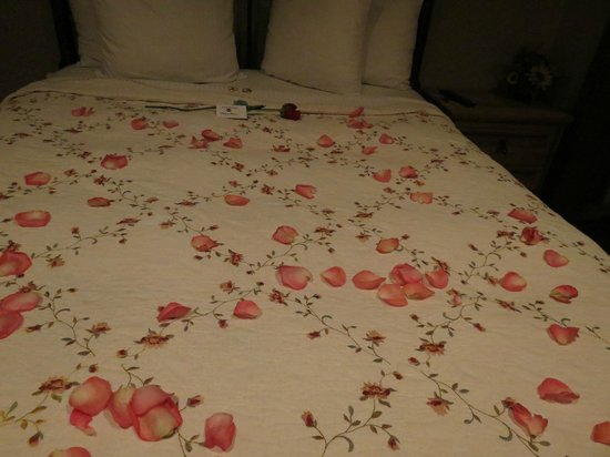 Chateau Avalon:                   Rose petals on our bed