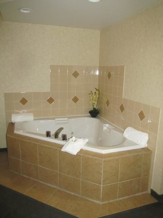 Rosslyn Inn and Suites:                   Jacuzzi