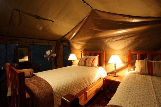 Elephant Valley Lodge: Tented accommodation