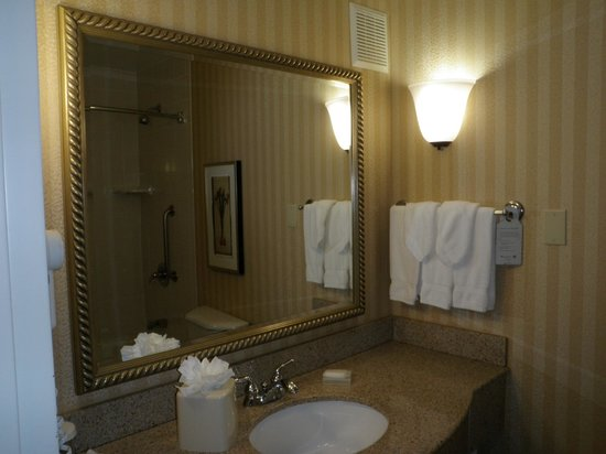 Hilton Garden Inn Anchorage:                   sink from bathroom door