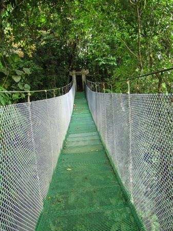 Los Lagos Hotel Spa & Resort:                   Suspension Bridge