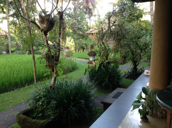 Ananda Cottages:                   View from our room