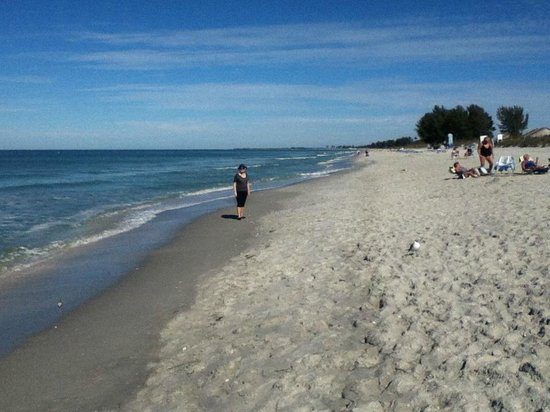 Captiva Beach:                   Where are all the people...NICE!!!