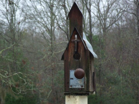 Butler Greenwood Plantation:                   Birdhouse on our deck.