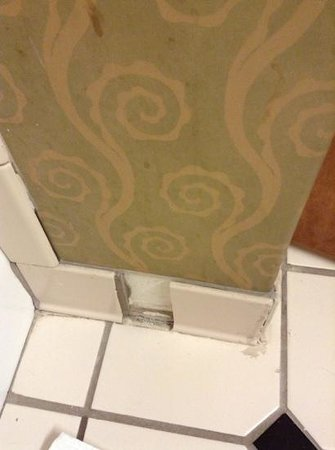 DoubleTree by Hilton Hotel Memphis:                   see the stains on the wallpaper....wow.