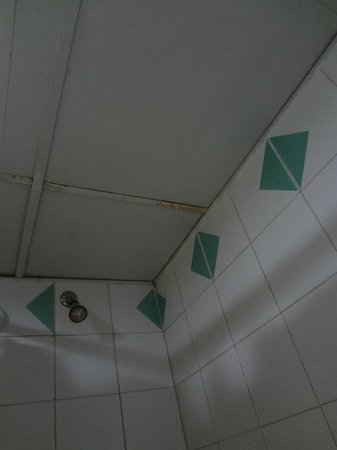 Be Live Experience Hamaca Garden:                   shower ceiling