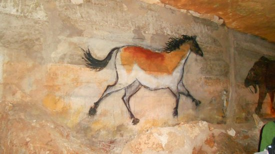 Inner Space Cavern:                   Prehistoric Horse?  Who knows....