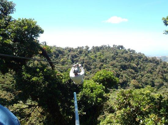 Casa Batsu:                   Ziplining