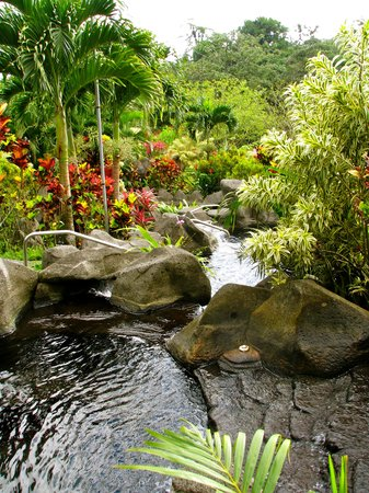 Arenal Kioro:                                     The hot springs.