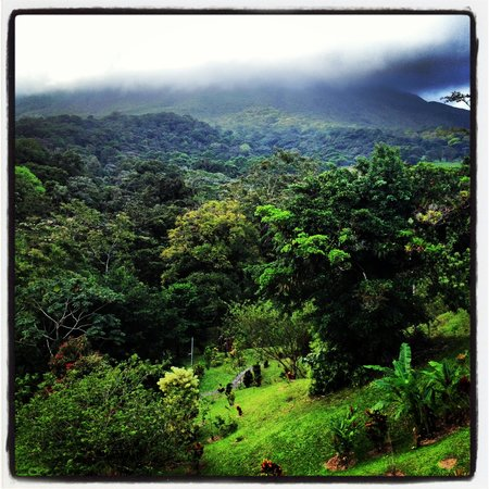 Arenal Kioro:                                     The view of the grounds.