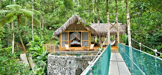 Pacuare Lodge - Honeymoon Canopy Suite