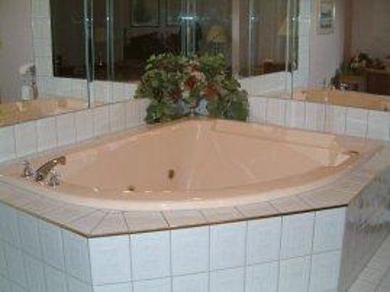 McIntosh Country Inn & Conference Centre: In room jacuzzzi