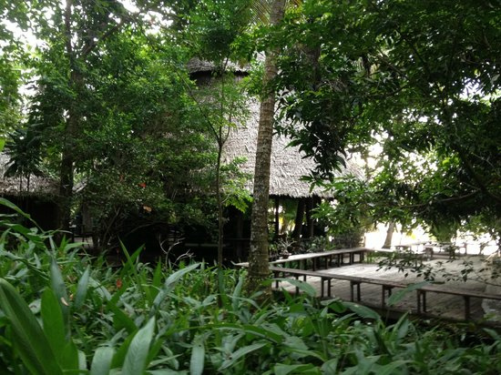 The Mangrove :                   dinning place