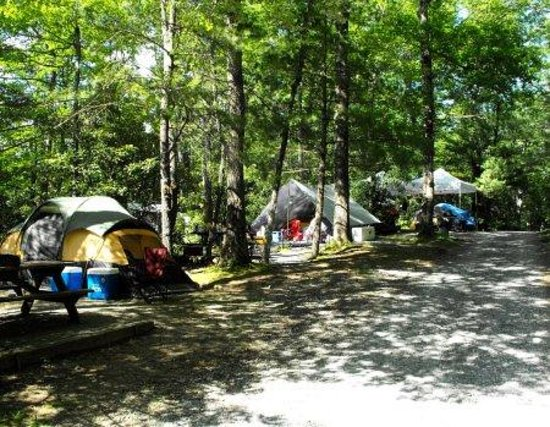 linville falls campground rv park cabins updated 2017