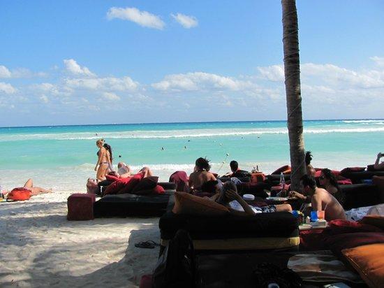 Hotel El Punto:                   Club de playa Mosquito Beach