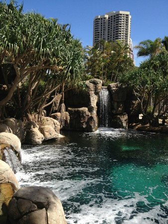 Surfers Paradise Marriott Resort & Spa:                   Lagoon pool