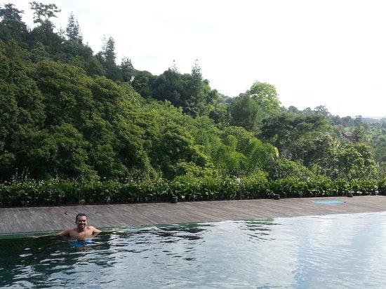 Padma Hotel Bandung:                   the pool