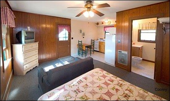 Three Oaks Resort On Lake Norfork: Studio cabin 3