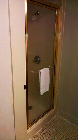 Red Roof Inn Austin - Round Rock:                   Polish brass accents and shower door
