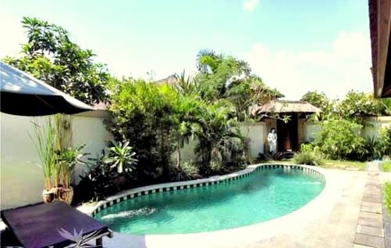 Tirtarum Villas, Canggu Bali: Private swimming pool @ Three Bedrooms villa