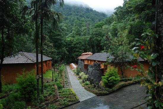 ‪Blue Ginger Spa Resorts Wayanad‬