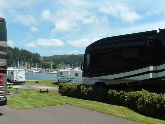 Winchester Bay RV Resort : View from Waterfront Site