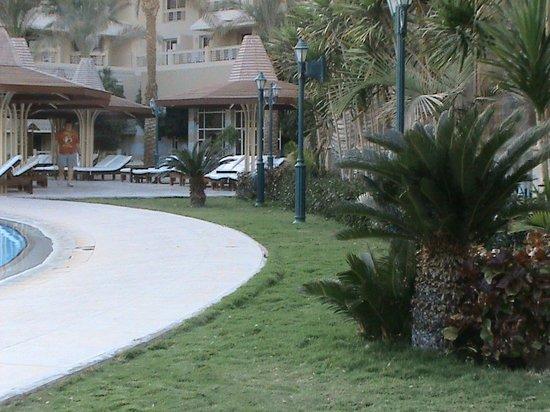Sindbad Aqua Hotel & Spa:                                     Next to the bar