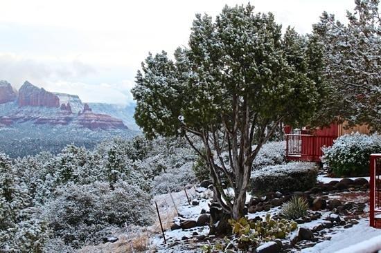 Sky Ranch Lodge:                   Zimmer mit direktem Blick