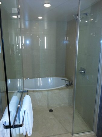 Aria Hotel & Casino:                   Shower Enclosure With Seperate Tub