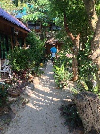 Dee Dee Beach House:                                     garden area                                  