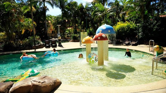 Ashmore Palms Holiday Village:                   pool